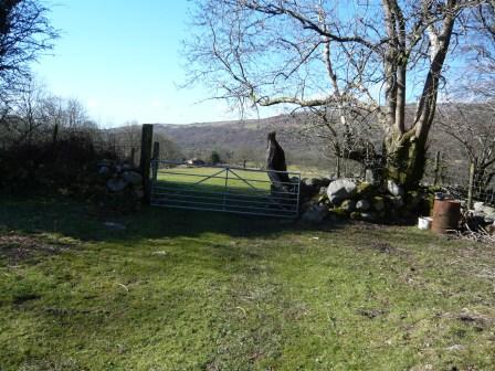 Brecon Beacons self-catering Holiday Cottage Craig y Nos farmhouse field