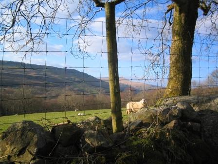 Brecon Beacons Self-Catering Holiday Cottage Craig y Nos farmhouse view of valley